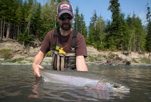 Fly fisherman holding a river caught steelhead with Raincoast Guides.