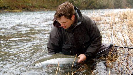 rain coast guides - winter steelhead fly fishing, Fly Fishing Bait